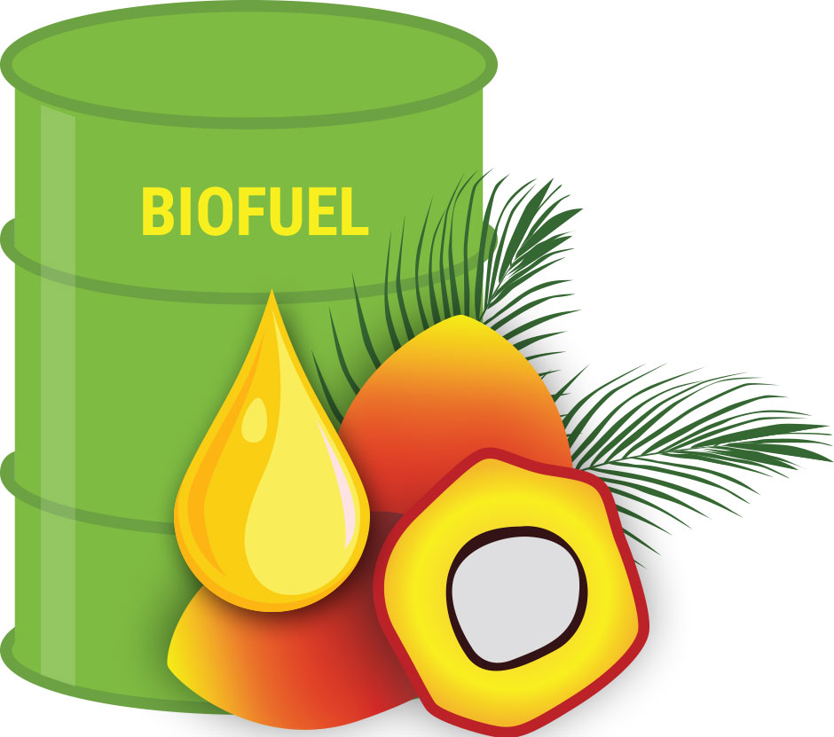 Biofuel Sumber Energi Alternatif