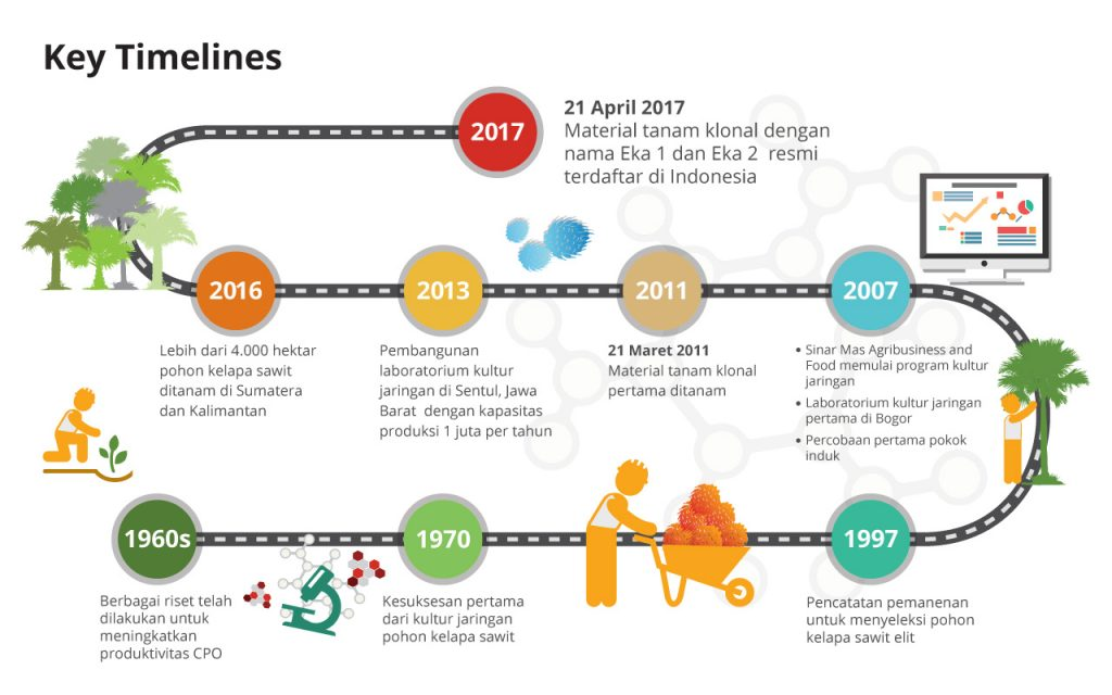 Timeline infographic id pt sinar mas agro resources and technology timeline infographic id ccuart Gallery