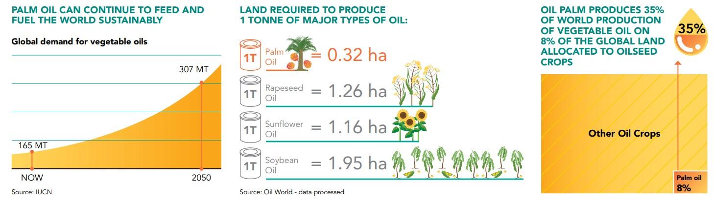 Kelapa sawit mempunyai produktivitas tertinggi per hektar jika dibandingkan minyak rapa, bunga matahari, dan kedelai.